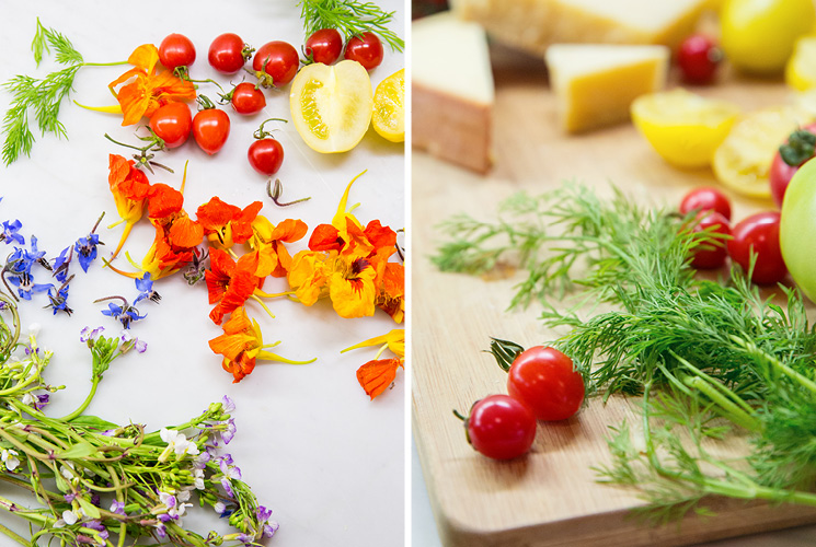 Fresh tomatoes and edible flowers